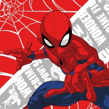 FARO Detský uterák Spiderman 30x30 cm