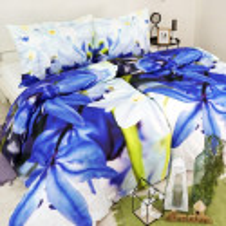 Obliečky bavlnené Ariel modré EMI